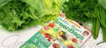 Debbie Meyer Green Bags review