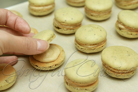 Top with the other macaron half